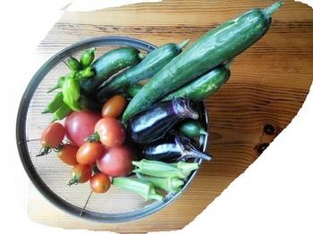 野菜7・31.jpg